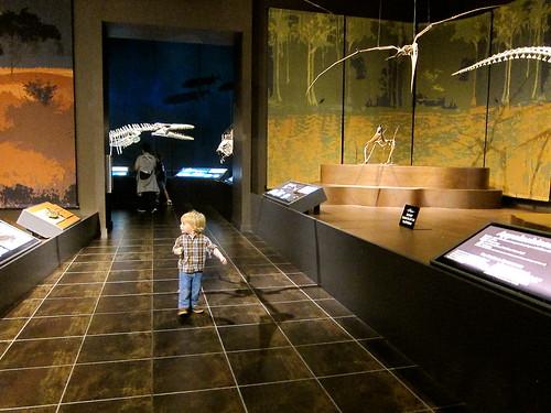at the Tellus Museum