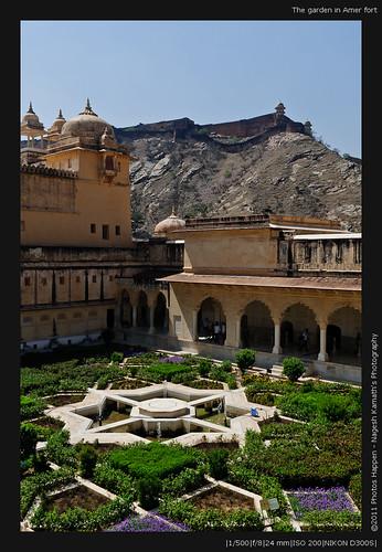 The garden in Amer fort