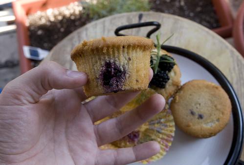 Blackberry Rosemary Pound Cupcakes