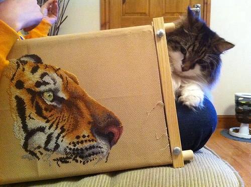 Crouching Tiger, Hidden Cookie