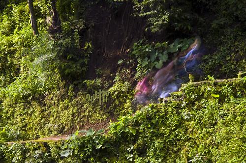 Extra Terrestrial Creatures in Balite Falls [Amadeo, Cavite]