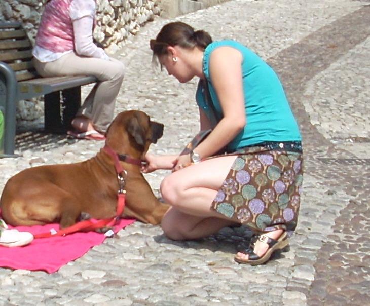 Gardasee_09_11_051_Ausschnitt
