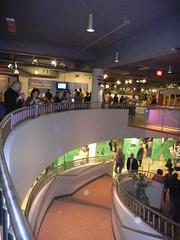 Museum Ramp