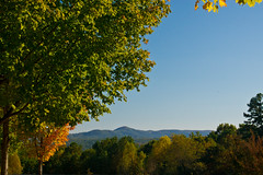 288/365 North Georgia Mountains