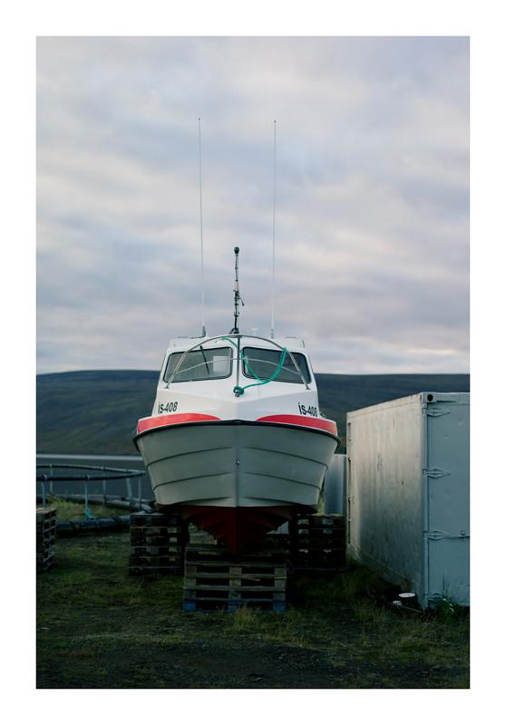 L1003538