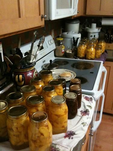25 quarts of peaches
