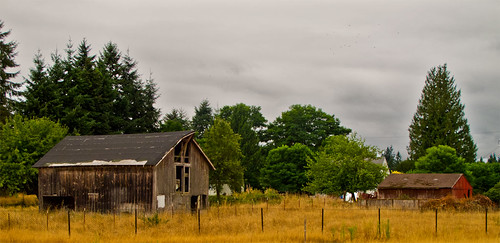 Day 261 :: 365 ...::... Barns by Echo9er