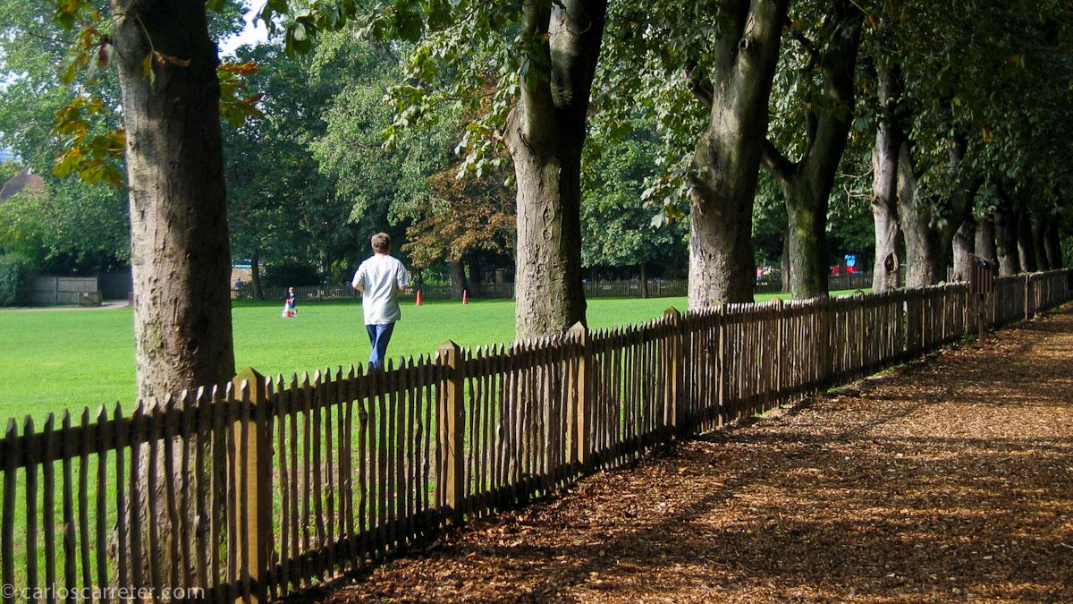 Embankment Gardens - Chelsea