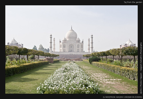 Taj from the garden