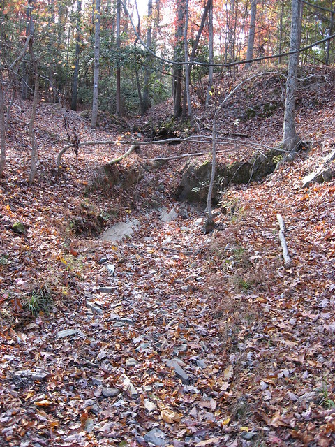 Gully down to bedrock, Morrow Mountains State Park, North Carolina (photo by A. Jefferson)