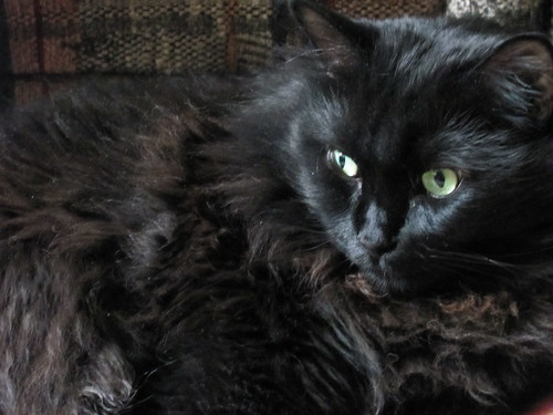 fuzzy supervisor 2