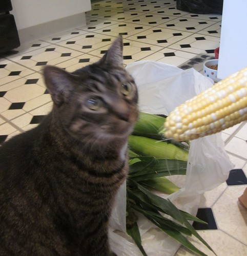 Katrina and sweet corn