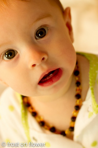 20110929-teethingnecklace2-4.jpg