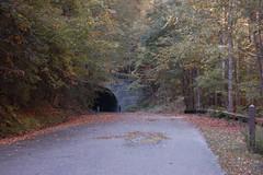 Great Smoky Mountains Railroad-109