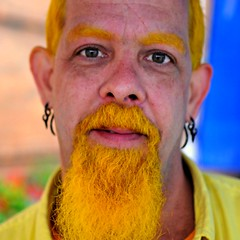 Yellow Beard