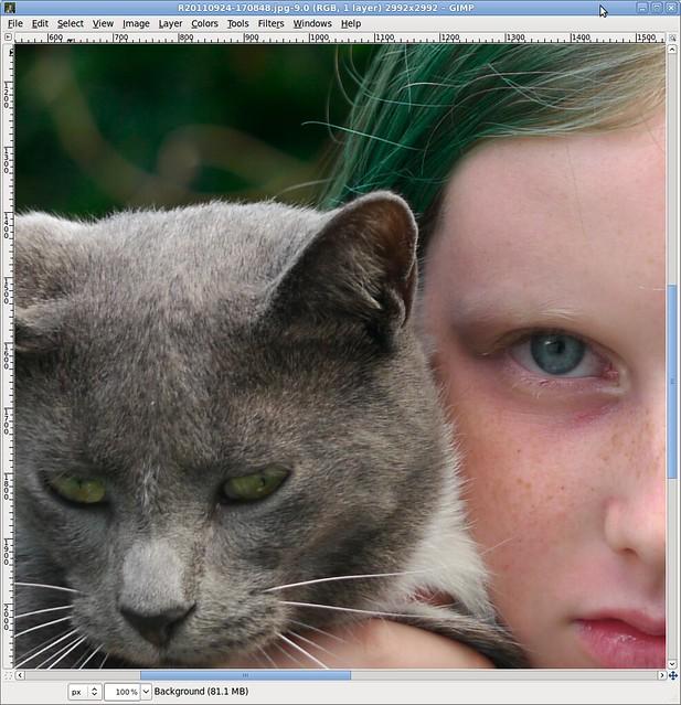 Green Eyes, Blue Eyes, Green Hair (100% crop)