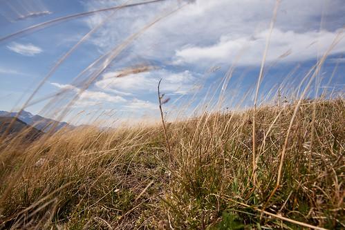 Windy Mountain Top by LilFr38