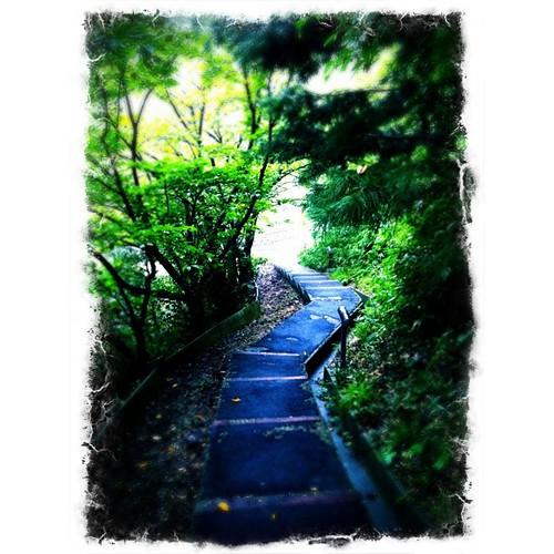 帰り道…  お疲れさまでした。#rainy #iphonography #instagram
