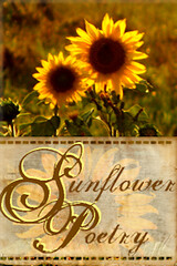 Sunflower Poetry