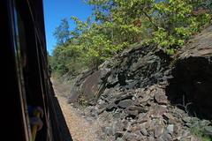 Great Smoky Mountains Railroad-96