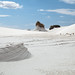 White Sands New Mexico-16.jpg