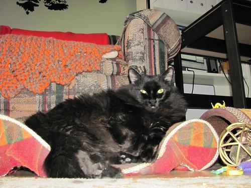 fuzzy supervisor1