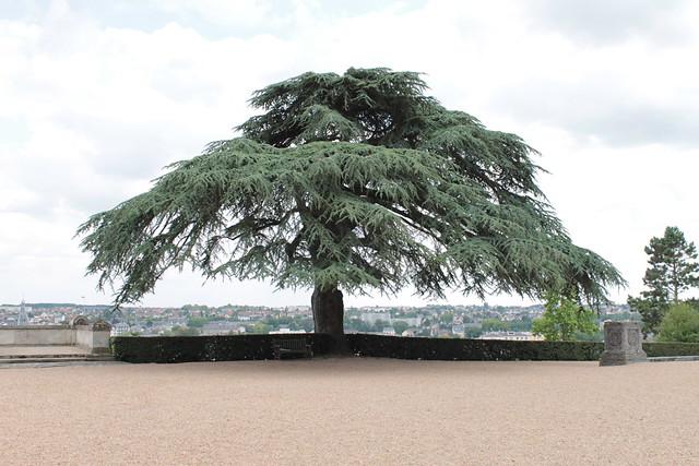 Parc de la Chapelle Royale