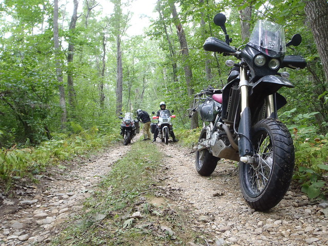 DR-Z 400 SM, Honda Transalp and BMW 1200 GSA in the woods