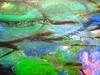 Mario Lavagetto, Quel Marcel!; Einaudi 2011. [resp. grafica non indicate], alla cop.: Claude Monet, Ninfee, 1916-19/Musée Marmottan Monet/Foto Lessing-Contrasto. Copertina (part.), 10