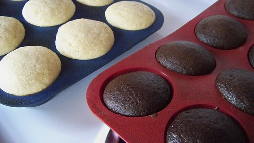 (Polar) Opposite Cupcakes
