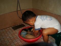 我自己幫小兔和大兔洗澡