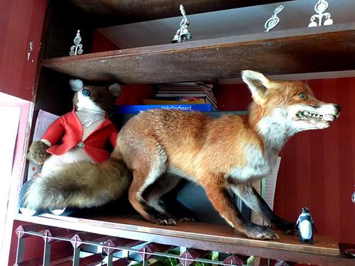 Fox & Hounds 2011