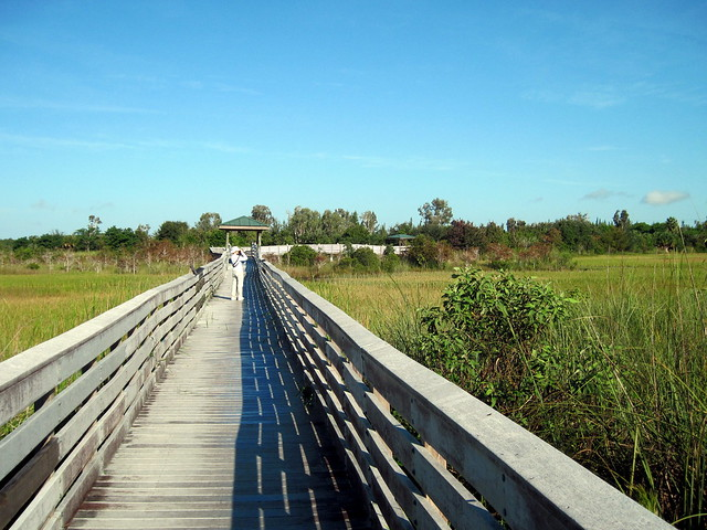 Chapel Trail boardwalk 20110925