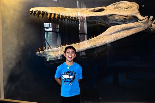EJ and the plesiosaur