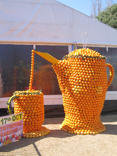 Tea pot and tea cup made of oranges