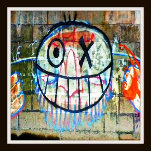 Taff Trail grafitti