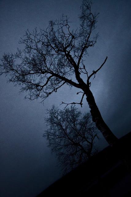 Høst, det er mørkt. (6/6)
