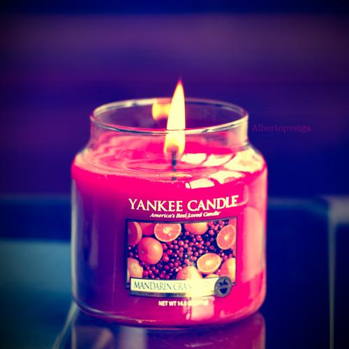 (246/365) Yankee Candle by albertopveiga