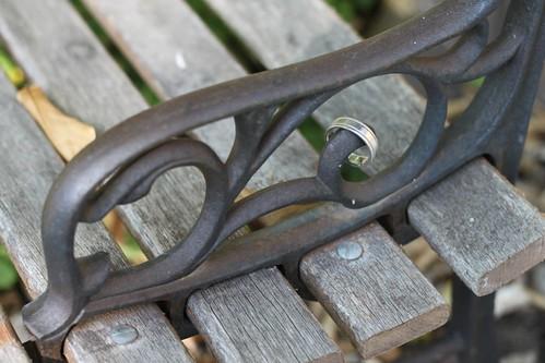 201/365 09/17/2011 Ring