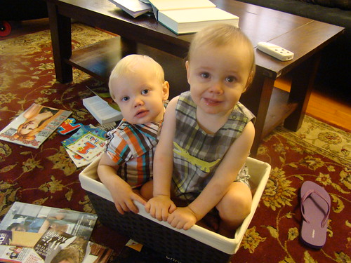Babies In A Box!