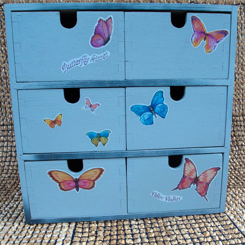day 225 :: 365 … Butterfly Storage by Echo9er