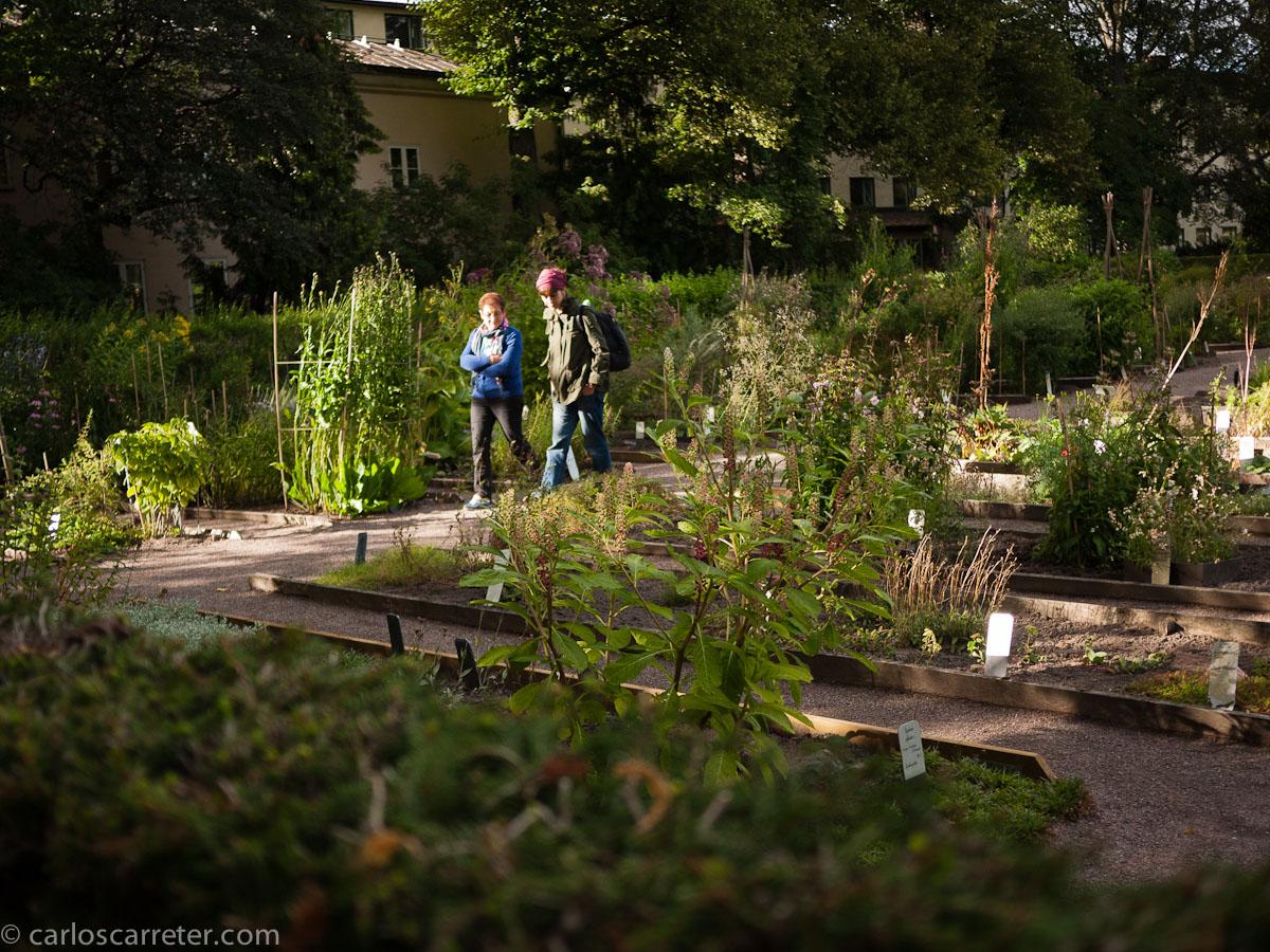 Jardín botánico de Linneo