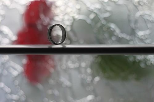 183/365 08/30/2011 Ring