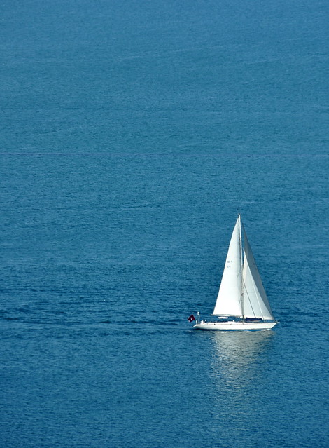 Sailboat in San Diego Harbor