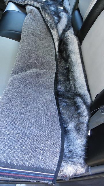 Back Seat Binding