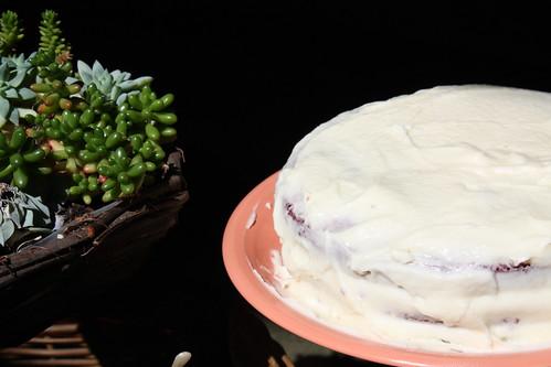 Tiernan's Cake 3