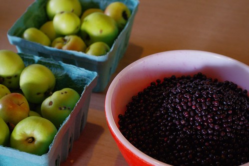Apples and Elderberries
