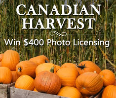 Canadian Harvest Photo Contest on Lenzr