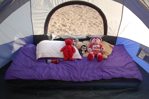 Punky's camp bed