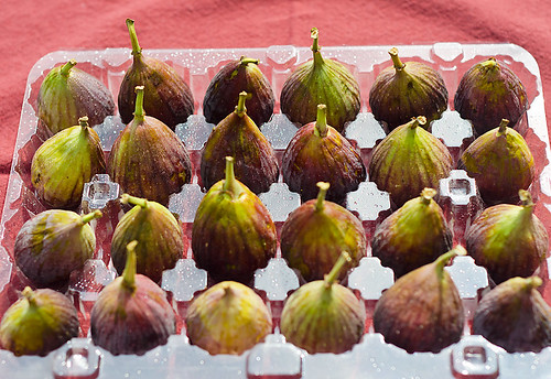 Figs in Tray